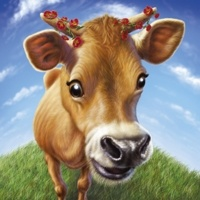1_9000_009, Smiling Cow -